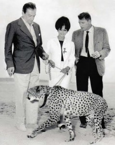Visconti, Burt Lancaster e Claudia Cardinale in una foto promozionale a Cannes nel 1963