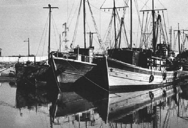 barconi tunisia (2)